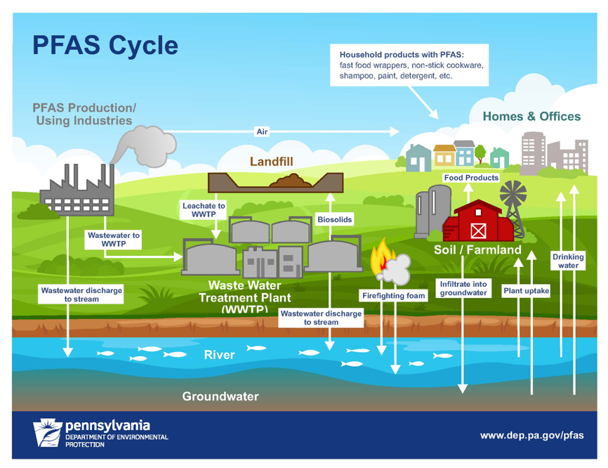 PFAS Cycle graphic